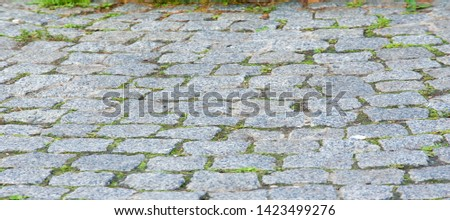 Granite pavement, roadway, road, paving, causeway, pave. a very hard, granular, crystalline, igneous rock composed of quartz, mica, and feldspar and often used as a building stone. #1423499276