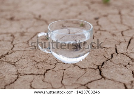 Concept of thirst, dehydration, lack of water. A cup of water on cracked dry ground. #1423703246
