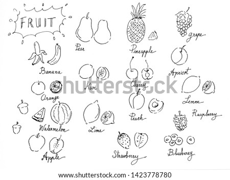 Set of fruits and vegetables doodles,hand drawn and on white  background. #1423778780