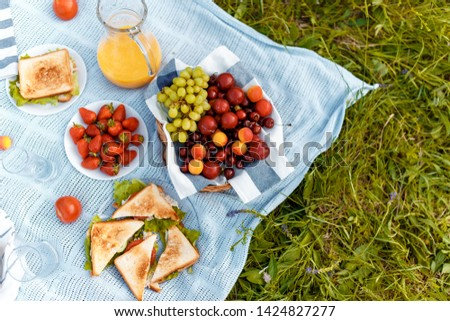 summer picnic on the grass with an open picnic basket, fruit, with toasted sandwiches and berries. picnic tablecloth. view from above.
