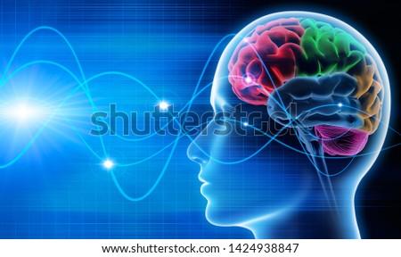 Brain waves - EEG - brain activity