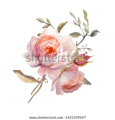 Hand-drawn watercolor roses. It can be used for your design.