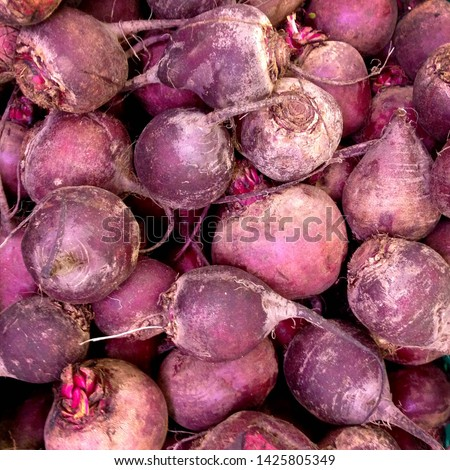 Macro Photo food root vegetable beet. Texture background fresh fruit beets. Image of beet vegetable #1425805349