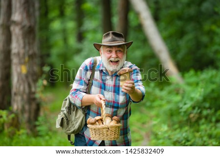 Picking mushrooms. Happy Grandfather with mushrooms in busket hunting mushroom. Mushrooming in nature #1425832409