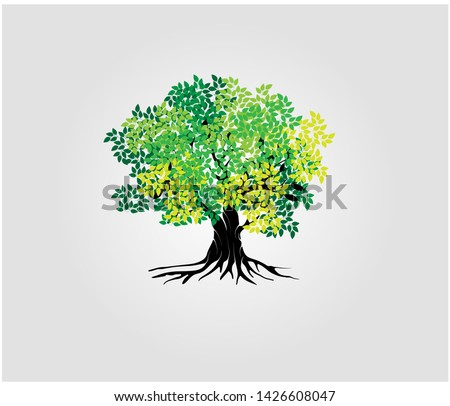 tree vector illustrations, roots, mangrove tree VECTOR isolated #1426608047