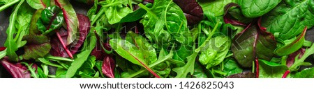 Healthy salad, leaves mix salad (mix micro greens, juicy snack, tomato). food background - Image #1426825043