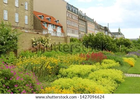 Rosenborg Castle Gardens, The King's Garden is the oldest and most visited park in central Copenhagen, Denmark. Alchemilla vulgaris, common lady's mantle.   #1427096624