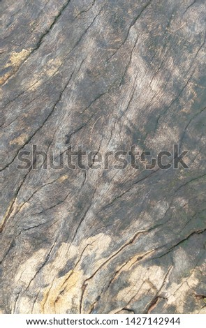 Old wood texture that has been traces through use for a long time, the wooden has cracks and has a dark gray color.  #1427142944