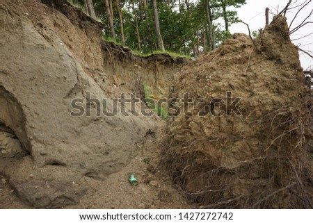 Slide Soil Erosion, Row of Trees Exposed to Seaside Cliff Face Erosion with Crumbling Earth and Dirt, Climate Change Sea Levels, Uprooted Trees Lying on Sand Cause by Coastal Erosion, Landslide #1427272742