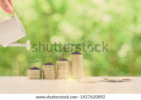 Investment for long-term sustainable growth concept : Investor pour water from a watering can to green sprout / small tree on rows of rising coins, depicts investing, wait to receive perpetual income Royalty-Free Stock Photo #1427620892