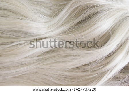 Beautiful hair. Long curly blonde hair. Color in light ash blonde.
