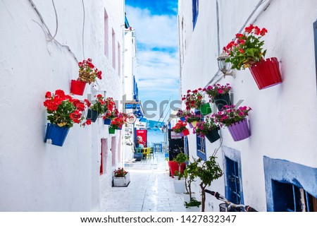 White Aegean Street, Bodrum / Turkey - June 2019: Colorful traditional aegean white street in Bodrum, Turkey.  #1427832347