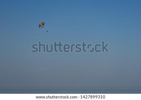 Parachute tandem over the sea against the blue sky #1427899310
