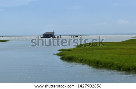 The marshland environment around the barrier island.  #1427902856