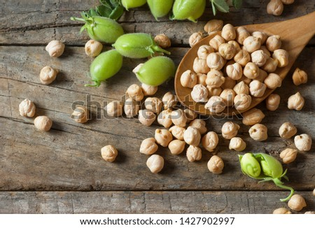 Uncooked dried chickpeas in wooden spoon with raw green chickpea pod plant on wooden table. Heap of legume chickpea background #1427902997