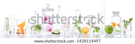 Scientific Experiment.Herbs,flower and fruit  in test tubes #1428114497