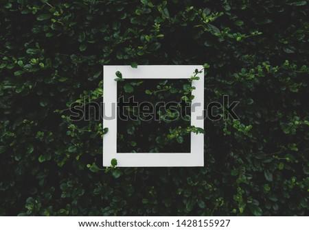White Frame On Green Grass for Background #1428155927