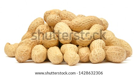 Organic peanuts in shell isolated on white background. Heap of peanut closeup #1428632306