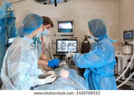 veterinarian or doctors doing surgery in the clinic. medicine, pet, animals, health care and people concept. #1428708923