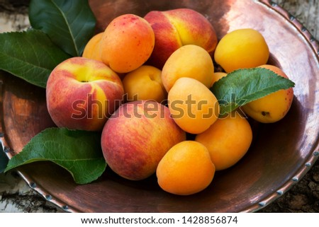 Ripe peaches and apricots on a copper plate and the textural natural wooden background #1428856874