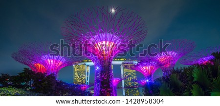 The Supertree grove at gardens by the bay with Marina Bay Sands hotel in Singapore. landmark and popular for tourist attractions. Singapore, 9 May 2019 #1428958304