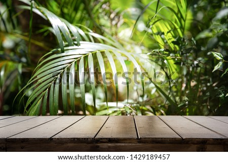 Dark wood table top (Bar) with blur on green palm leaves or tree in tropical forest with bokeh light at background - Using for Mock up template for display of your design.