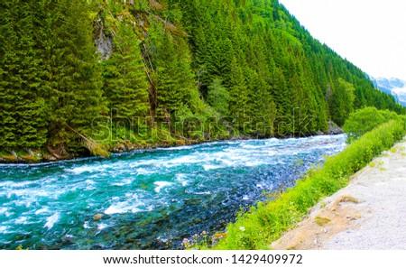 Mountain wild river flow landscape. Wild river in mountains. Mountain river landscape. Mountain wild river flowing #1429409972