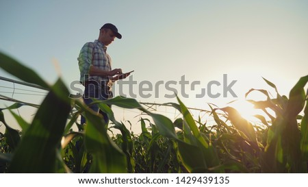 Young farmer working in a cornfield, inspecting and tuning irrigation center pivot sprinkler system on smartphone. #1429439135