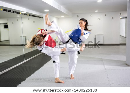 Protective gear in martial art sparring, safety factor #1430225138
