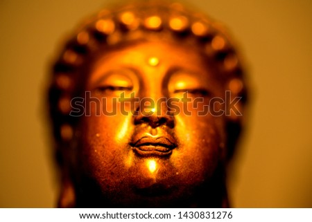 Indian Buddha in deep meditation #1430831276