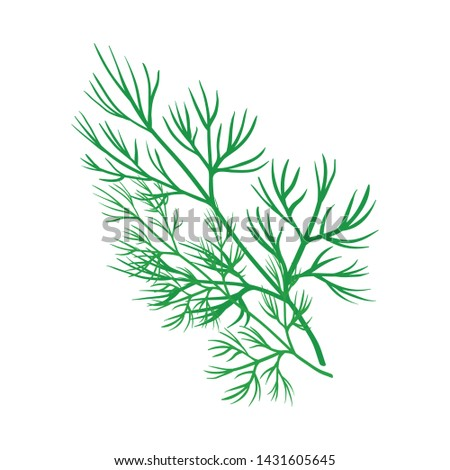Isolated object of dill and greenery icon. Set of dill and aromatherapy stock symbol for web. #1431605645