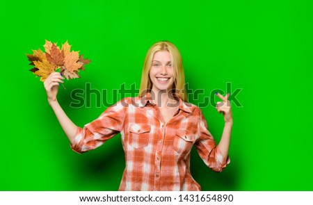 Autumn. Autumn leaves. Autumn sales. Autumnal sales. Autumnal leaves. September. October. November. Maple tree. Season sale. Black Friday. Isolated. Smiling woman pointing at leaves in hand. Maple. #1431654890