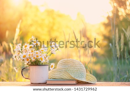 beautiful daisies in white cup, book, braided hat. summer garden. Rural Chamomile flowers in sunlight. Summer time season. copy space #1431729962