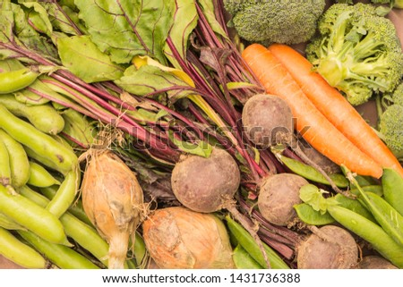 Freshly picked vegetables, Broad Beans, Onions, Beetroot, carrots, Peas and Broccoli. Close up view from above. #1431736388