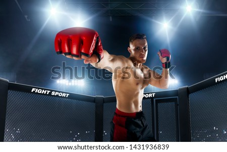 MMA fighters on ring. Fighting Championship. Royalty-Free Stock Photo #1431936839
