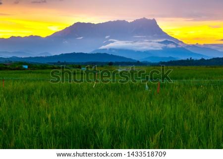 Mount Kinabalu View During Sunrise  From Kota Belud,  Sabah, Malaysia. #1433518709