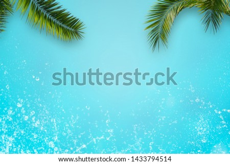 green palm leaves and water splashes on blue background #1433794514