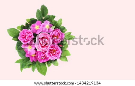 Pink roses on a light pink background. Festive floral arrangement. Background for greetings, invitations, cards. Bright shades. #1434219134