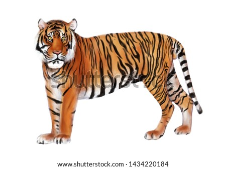 Creative representation of Standing isolated Wild tiger watercolor painting in white background #1434220184