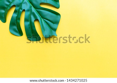 green leaf on yellow background. #1434271025