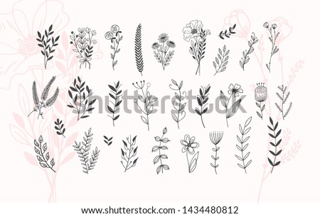 minimalistic flower graphic sketch drawing, trendy tiny tattoo design, floral botanic elements vector illustration Royalty-Free Stock Photo #1434480812