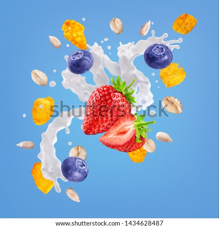 White liquid fresh milk, yogurt or cream 3D swirl splash, berries, corn flakes, oat cereals isolated. Milk or yogurt, strawberry, blueberries, oat milk, cream swirl, cornflakes, cereals splash design #1434628487