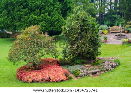 Two trees in the center with colorful plants beneath it #1434725741