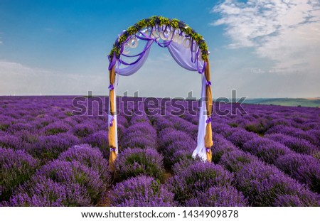 Wedding arch with an inscription area New Kobusk on a lavender field. #1434909878