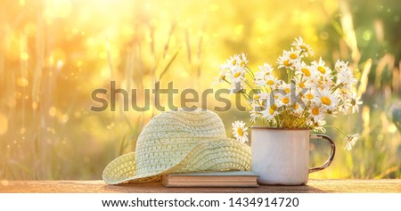 chamomile flowers in Cup, old book, braided hat in summer garden. Rural landscape with daisy in sunlight. Summertime season. copy space #1434914720