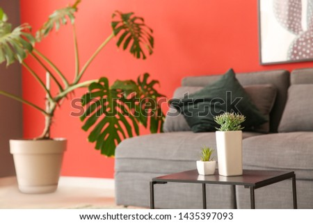Plants in pots on table in interior of room #1435397093