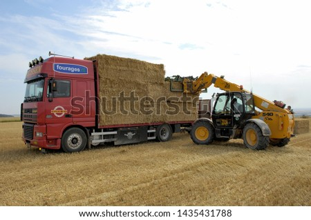 Marne, France, July 2008. Straw trading. Loading trusses of wheat straw on a platform truck #1435431788