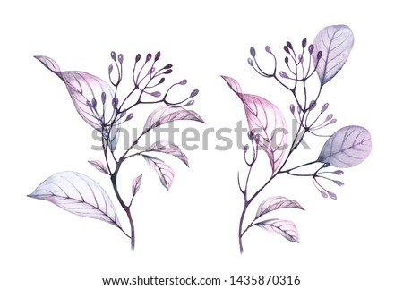 Watercolor branches. Transparent  floral clipart set with grey dusty pink purple leaves and berries. Hand painted spring decorative pattern design elements isolated on white