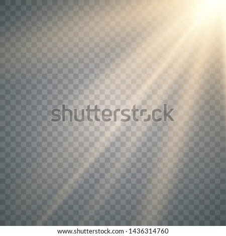 Vector of sunlight, bright rays of illumination on a transparent background. Lens flare light effect. Sun rays #1436314760