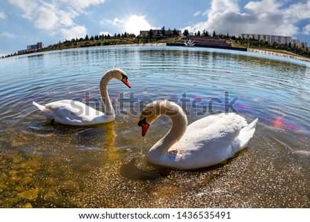Visitors to the left side of Heydar Aliyev Park Complex in Ganja A beautiful lake and white swans. The artificial lake and waterfall in the park gives a special look. Azerbaijan, Ganja, 23.04.2019 #1436535491